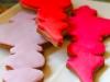 biscotti-natale-clicktocare